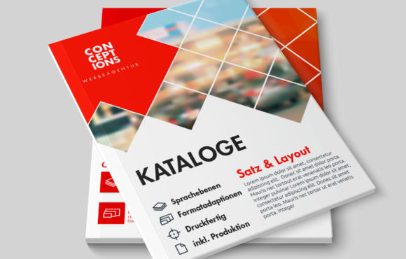 Editorial Design (Broschüren, Kataloge, Magazine …)